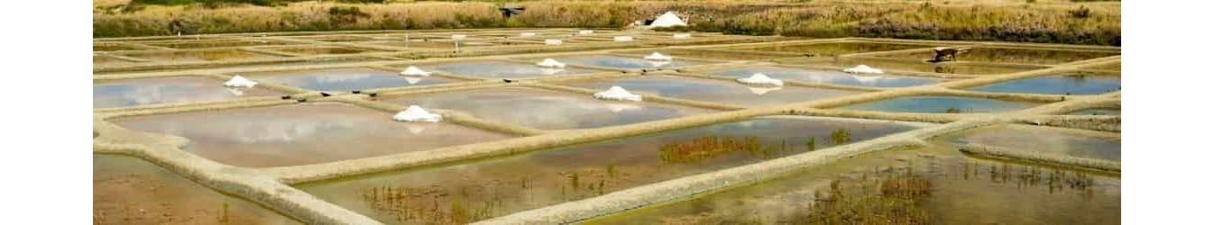 Sel de Guérande - Fleur de Sel - Produit des marais salans