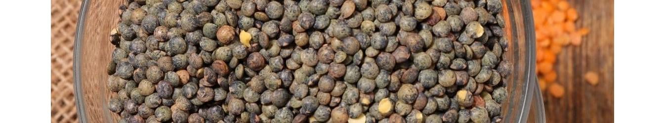 Lentille Verte du Puy-Vente lentille d Auverge-Produit regional